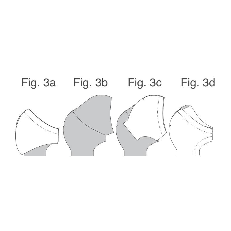 instruction:Fig. 3