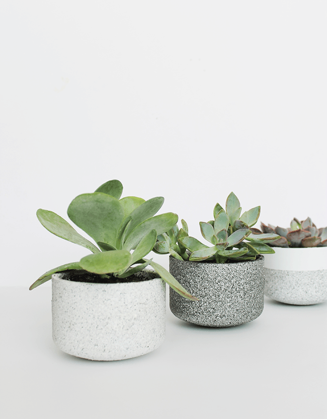 diy-mini-granite-pots-almost-makes-perfect2