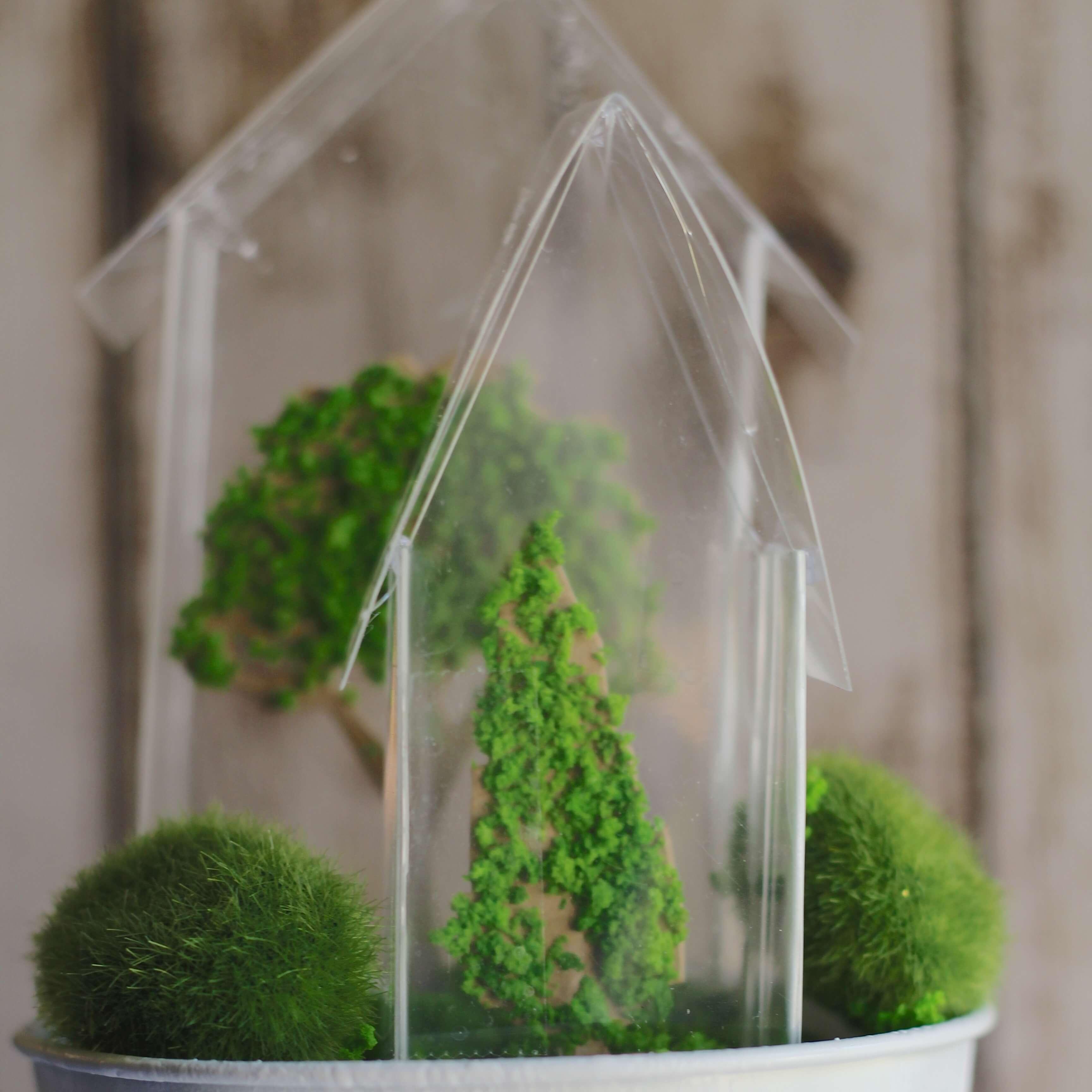 Everyday Party Magazine Tiny Greenhouse Decor 4