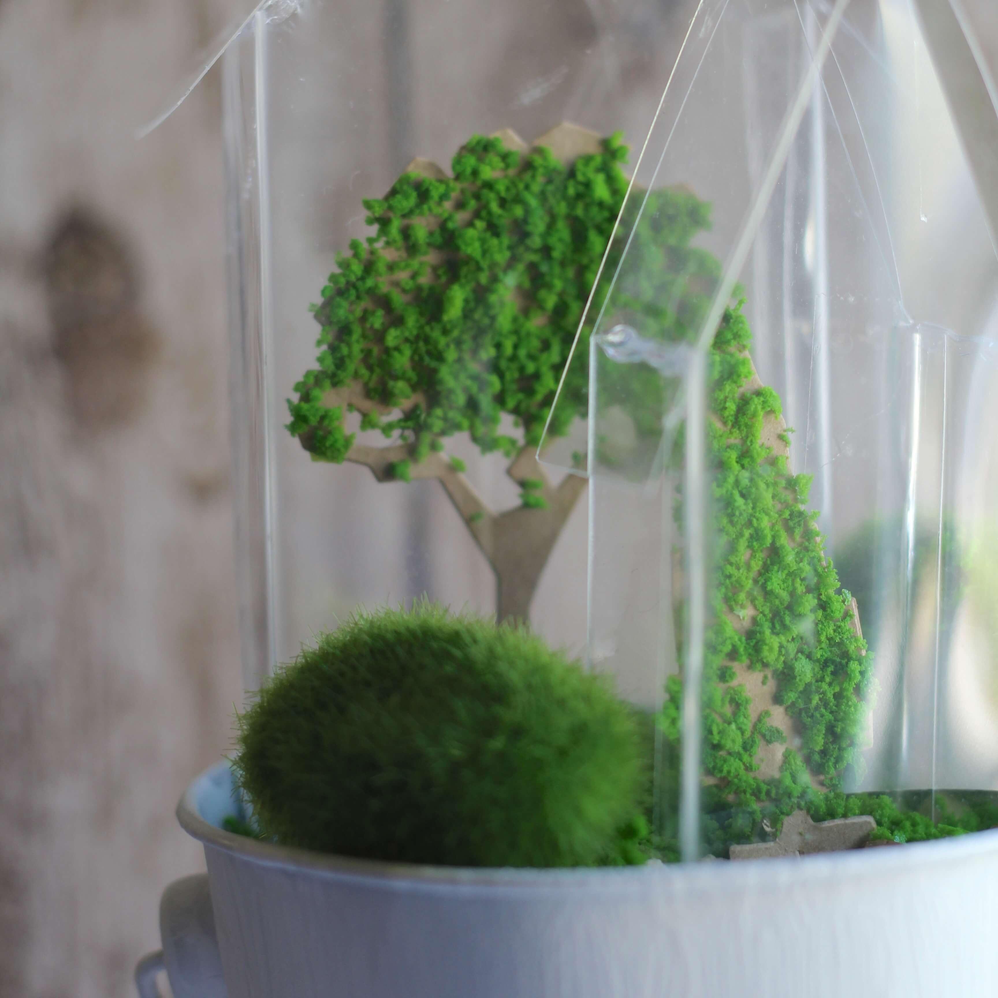 Everyday Party Magazine Tiny Greenhouse Decor 7