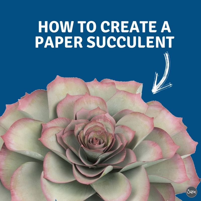 DIY Your Own Paper Succulent With This Easy How To Guide